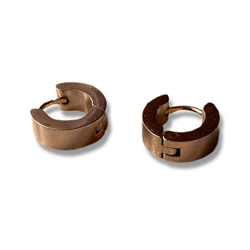 steel earrings with a gold finish