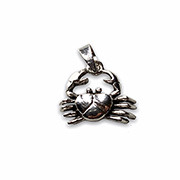 cancer silver pendant